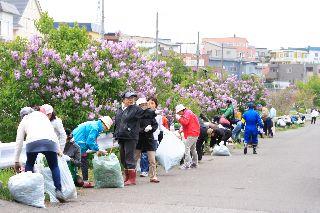 20140525-吉田川清掃10